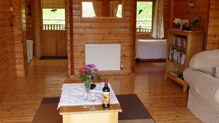 Pine lodge with hot tub in Wales