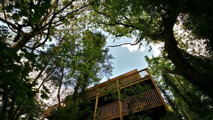 Sunridge TreeHouse