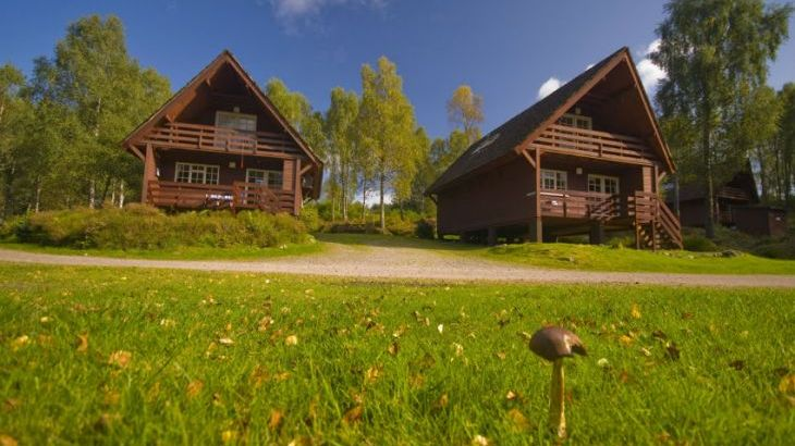 Woodland Lodges at Tomich Holidays