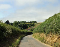 country lanes edged by hedgerows