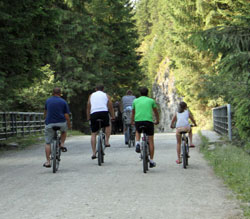 pine lodge breaks with bicycle paths and hire