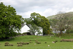 Dogs welcome holiday cottages northern England